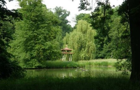 Průhled na Čínský pavilón na ostrově Divokého rybníka